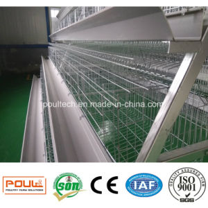 Best Design Durable Automatic a Frame Battery Layer Chicken Cage pictures & photos