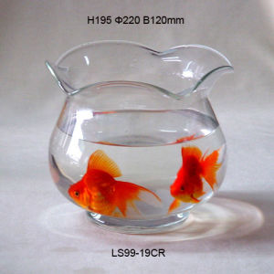 Fish Bowl (LS99-19CR)