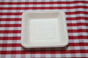 Biodegradable Disposable Food Tray (HR-26)