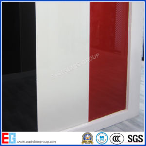 Glass Factory Custom Double Coated Paint Glass (Paint Glass)