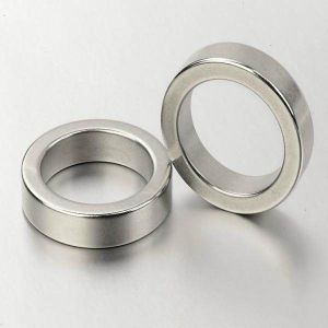 Big Radial Neodymium Magnetic Ring Magnet