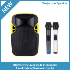 12 Inches Professional Audio PA LED Projection Speaker for Sale