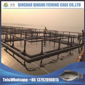 Neritic Tilapia Fish Anti-Storm High Yeild Aquaculture Farming Cage pictures & photos
