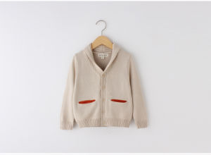 Caual Boy Coat for Children Clothing by Cotton pictures & photos