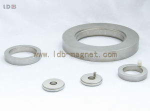 SmCo Magnet with Customized Shape