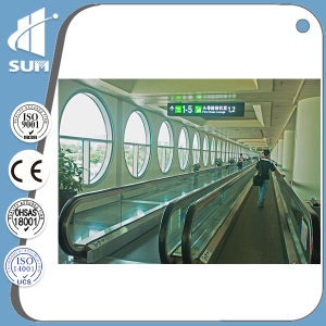 for Supermarket Speed 0.5m/S Moving Walkway pictures & photos