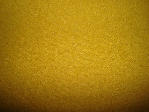 Wool Polyester Crepe Fleece Knit Fabric pictures & photos