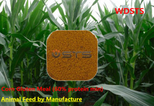 Animal Feed Corn Gluten Meal with 60% Protein