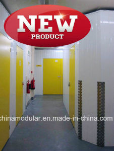 Hinged Door for Mini Storage & Warehouse (CHAM-HD001) pictures & photos