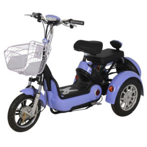 Zvgreen Hot Sale High Quality Electric Scooter with Three Wheel