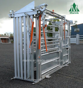 HDP or Powder Coated Cattle Squeeze Crush to Sale pictures & photos