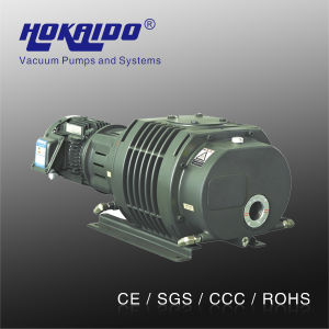 Vacuum Sputtering Machine Used Hokaido Roots Vacuum Pump (RV0500)