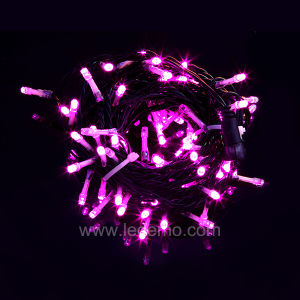 LED Decorative Pink String Lights (LDS 100P5C)