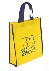 PP Woven/Non Woven Bag/ Shopping Bag/ Advertising Bag/Promotional Bag pictures & photos