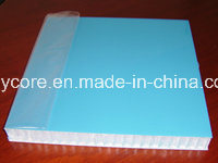 Fire-Retardant Skin Honeycomb Sandwich Panel pictures & photos