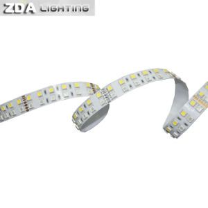 144LEDs/M 5050 RGBW/White Double Row LED Strip Light