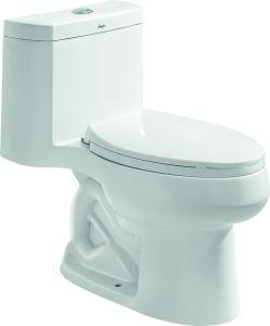 China Similar Kohler Toilet Santa Rosa Comfort Height Compact