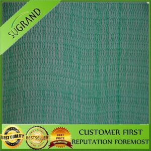 HDPE Monofilament Building Safety Net pictures & photos