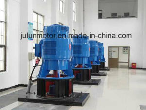Vertical Low Voltage Motor 3-Phase Asynchronous Motors AC Motor Induction Electrical Motor Special for Axial Flow Pump Jsl12-10-115kw