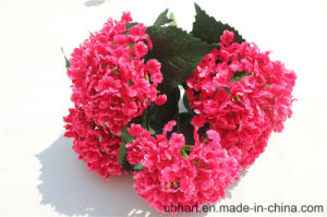 Wholesale Cheap Artificial Hydrangea Flowers for Wedding Decoration pictures & photos