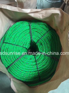 Green with Blue&Red PP Rope Ppd PE Rope pictures & photos