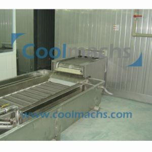 Industrial Poultry Food Double Spiral Freezer/IQF Quick Blast Freezer Machines pictures & photos