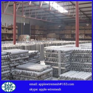 High Quality Stainless Steel Wire Mesh for Paper-Making pictures & photos