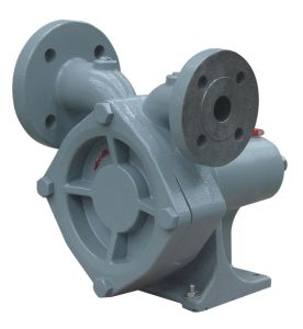 LPG Turbine Pump pictures & photos
