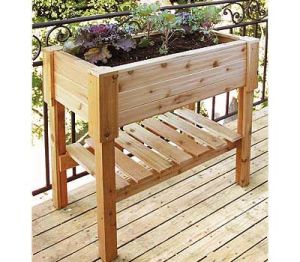 China Wood Garden Planting Tables Natural Cedar - China Raised Gardening Beds And Wooden Planting Tables Price