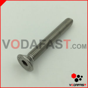 Stainless Steel Dog Point Screw with Washer pictures & photos