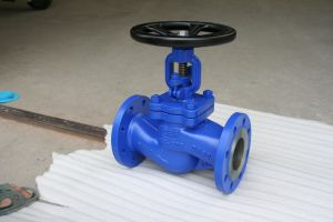 Cast Steel DIN Globe Valve pictures & photos