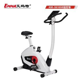 Popular Style Magnetic Bike (S6156B) pictures & photos