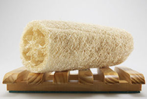 Bating Luffa Sponge (GRB2) pictures & photos