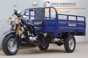 150cc, Three Wheel Motorcycle, China New Style, Cargo Tricycle, High Quality, Hot Sale, Gasoline Trike, Tuk Tuk (SY150ZH-E1) pictures & photos