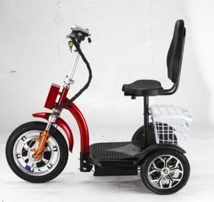 Electric Bike Fold Electric Bike Ebike with UL Certificate for Outdoor Sport pictures & photos