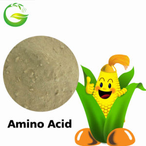 Organic Fertilizer Plant Source&Animal Source Amino Acid 45%-80% pictures & photos