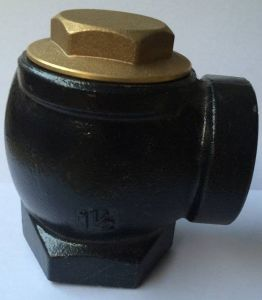 Iron Cast Material 1.5inch Check Valve pictures & photos