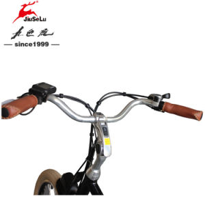 Powerful Front/Rear Disk 36V 250W Brushless Motor E-Bicycle (JSL038S-5) pictures & photos