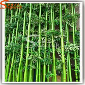 China Manufacture Artificial Plastic Lucky Bamboo Plants Tree pictures & photos