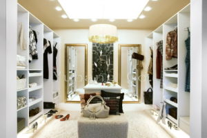 Plywood Wardrobe Closet in White Color (Bedroom closets) (BF18) pictures & photos
