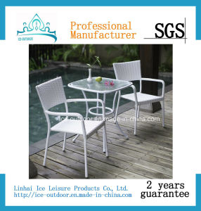 Outdoor Furniture Garden Furniture Rattan Dining Table Chair (FD-060I)