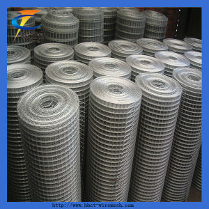 1/4 Inch Galvanized Welded Wire Mesh Rolls pictures & photos