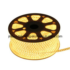 110/230V LED Lighting 5050SMD Flexible ETL Strip LED Light pictures & photos