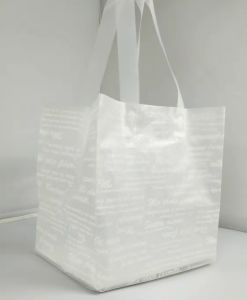 High Quality Printed Carrier Loop Handle Bags for Garments (FLL-8367)