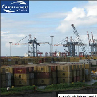 Expert of Shipment Transportation, Storage, Customs Delaration & Clearance Service