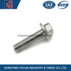 China Fasteners Supplier Stainless Steel Hexagon Flange Bolt pictures & photos