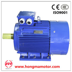3hm Electric AC Asynchronous Induction Motor pictures & photos