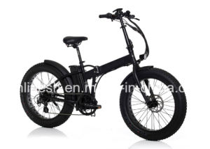250W/500W 24in X4 Folding/Foldable Fat Tyre/Fat Tire Electric Bicycle/Pedelec/E Bike/E Fatty Bike/Electric Beach Bike/E Sand Bike/E Snow Bike with Ce. pictures & photos
