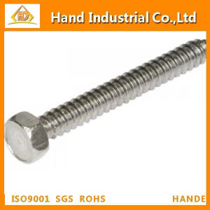 Stainless Steel 304/316 Hex Head Self Tapping Screw pictures & photos