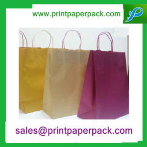 Eco Friendly Twist Handle Luxury Paper Cosmetic Shopping Bags pictures & photos